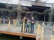 Zoo Shijiazhuang.jpg