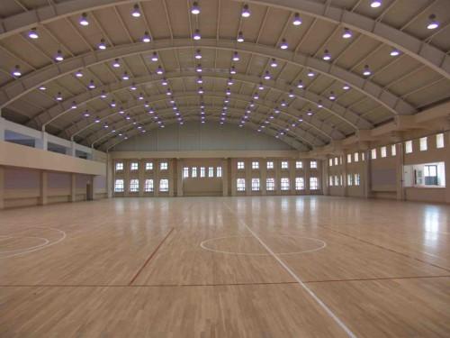 体育馆 (2)